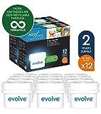 Aqua Optima Evolve 2-Jahre-Packung, 12 x 60-Tage-Wasserfilter - Für *BRITA Maxtra (nicht *Maxtra+) EVD912 (Verpackung sortiert)
