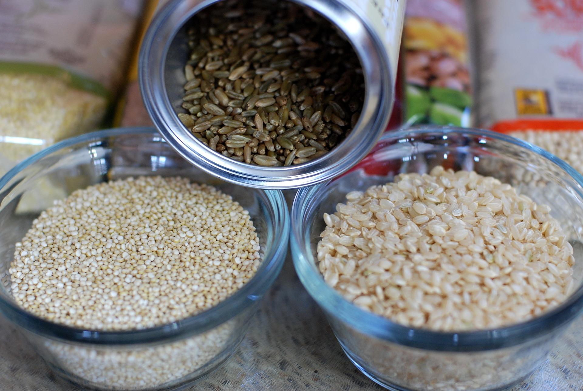 Reiskocher Test Reiskocher Vergleich