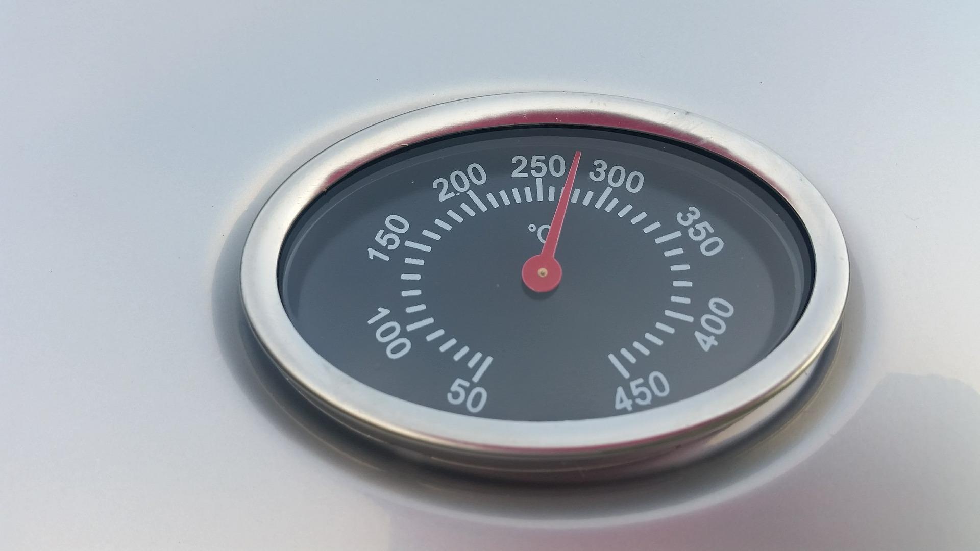 Digital Haushalts Kochthermometer Küchen Einstichthermometer sofort lesen Sonde